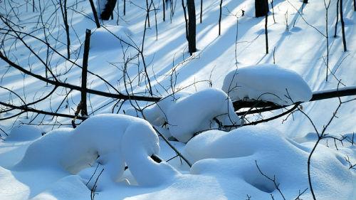 зима сугробы во сне