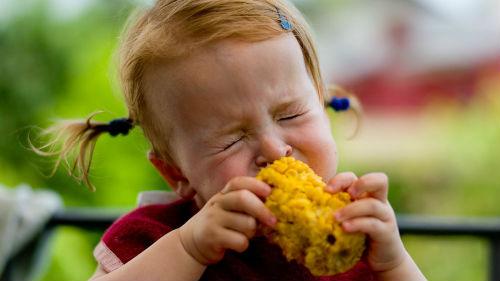 есть вареную кукурузу