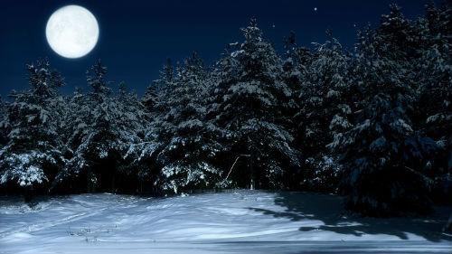 лунный календарь февраль