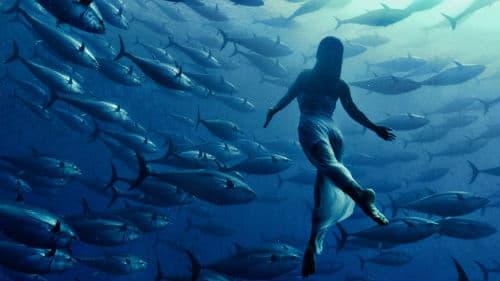 приснилось много рыбы девушке