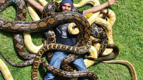 приснилось много змей мужчине