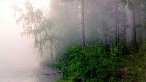 Сонник туман во сне к чему снится туман