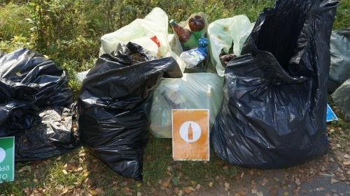 выбрасывать мусор