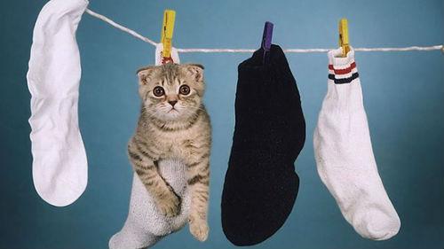 видеть мокрые носки