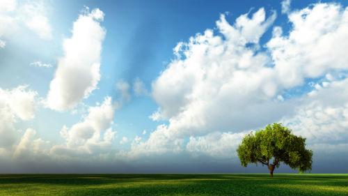 к чему снятся облака и небо