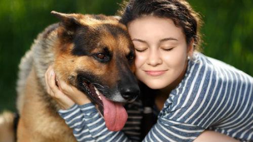 Фото Сонник обнимать большую собаку