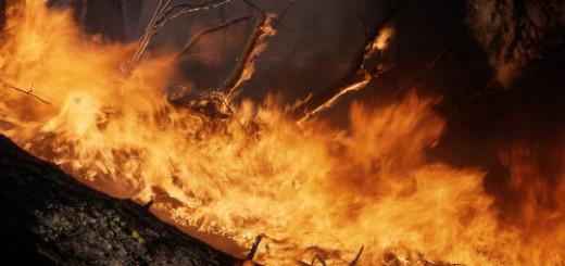 огонь пожар во сне