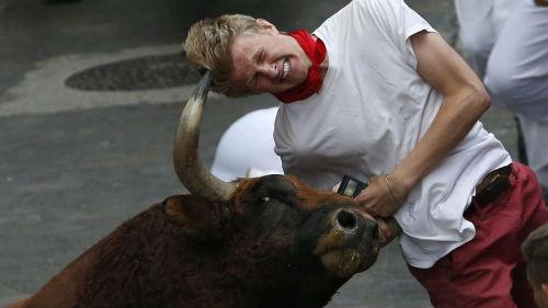 нападающий бык с рогами