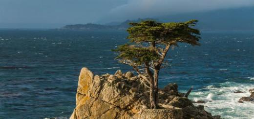 к чему снится остров в море