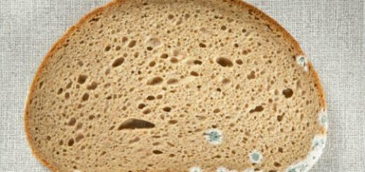 хлеб с плесенью во сне