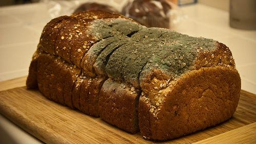 К чему сниться хлеб белый и чеоный