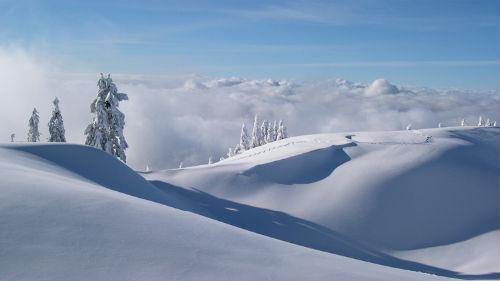 снег белый чистый сугробы
