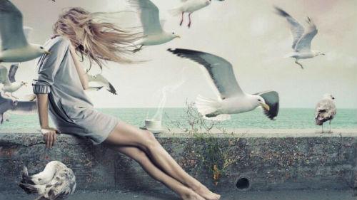 к чему снятся белые птицы женщине