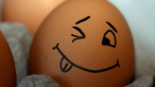 куриные яйца свежие