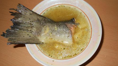 уха их рыбьего хвоста