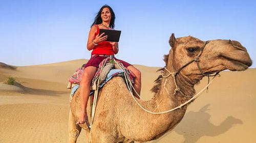 к чему снится верблюд женщине кататься