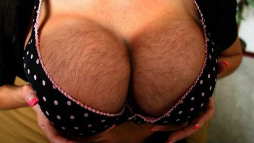 Фото женские волосатые груди
