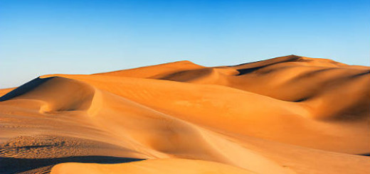 желтый песок во сне