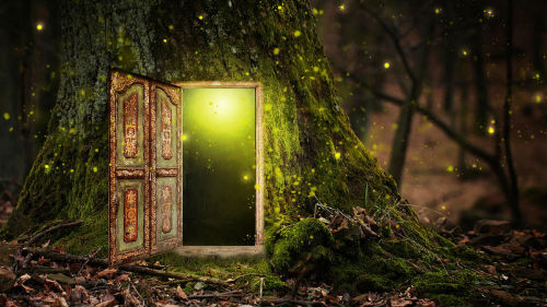видеть волшебную дверь