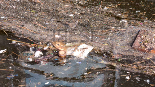 грязная река во сне