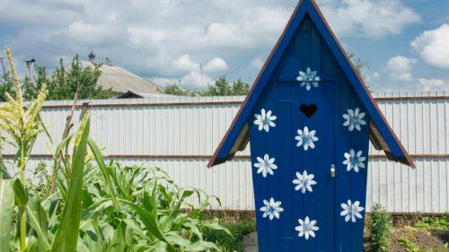 деревенский туалет во сне