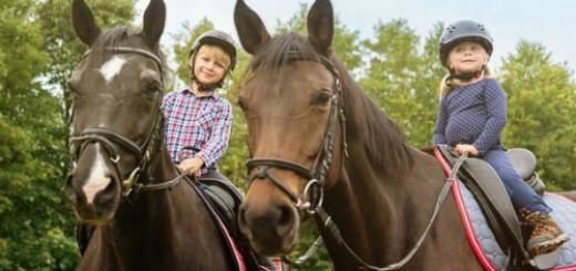 ехать на лошади во сне