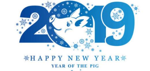 2019 год желтой земляной свиньи