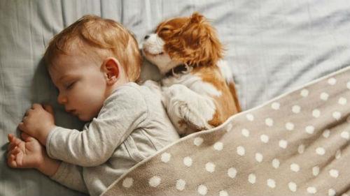 исцеление во сне
