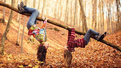 спускаться с дерева