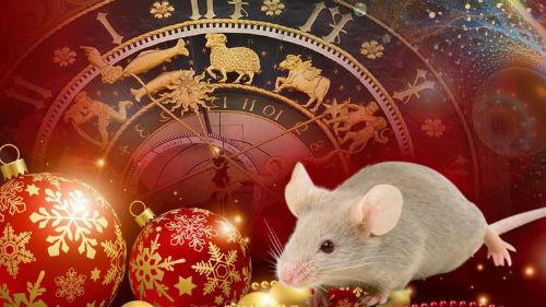 предсказания белой крысы на 2020 год
