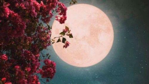 к чему снится луна большая и полная