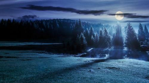 лунная дорожка во сне
