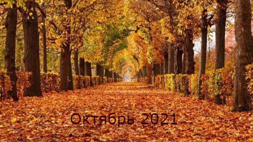 гороскоп на октябрь 2021